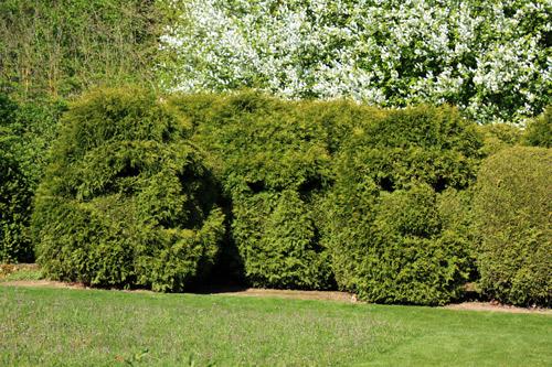 jardin de Séricourt01222012IMG_0019