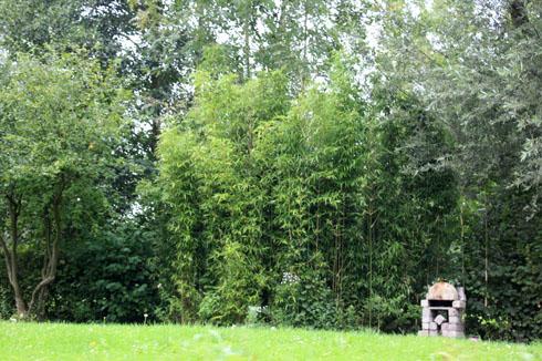 jardin sur l eau les hortillonnages d amiens place des jardins le blog. Black Bedroom Furniture Sets. Home Design Ideas