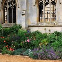 Leçon de massif Anglais à Cambridge