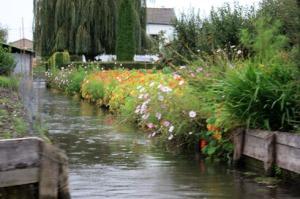 Jardins sur l'eau