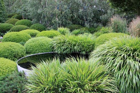 Hakonechloa macra l herbe du japon place des jardins - Quelles plantes pour jardin zen ...