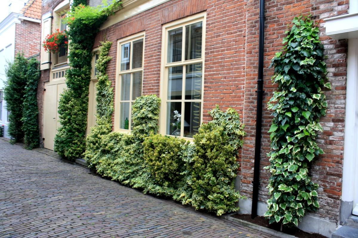 Fa Ade V G Talis E En Ville Place Des Jardins Le Blog