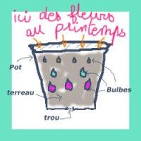 Les bulbes en lasagne: une recette à succès!