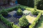 buis et plantes couvre sol