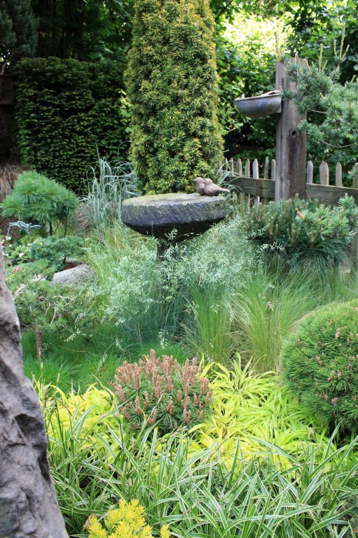 jardin de graminées et de conifères