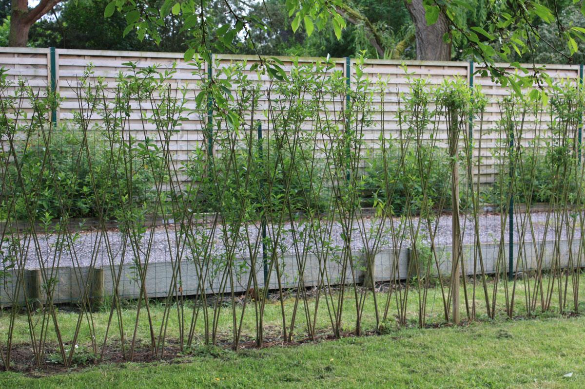Un nouveau jardin la campagne place des jardins le blog for Chaise qui ne prend pas de place