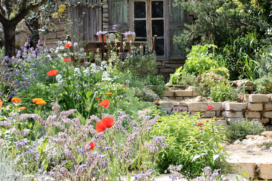 Jardin méditerranéen: inspiration à suivre  Place des ...
