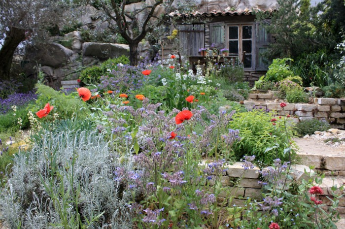 petit jardin inspiré du style méditerranéen