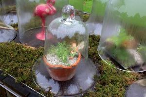 Jardin sous cloche, une bonne manière d'échapper à la pluie!