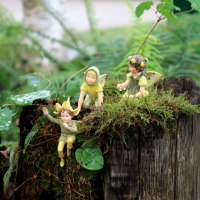 Jardin de fées, jardin de rêve