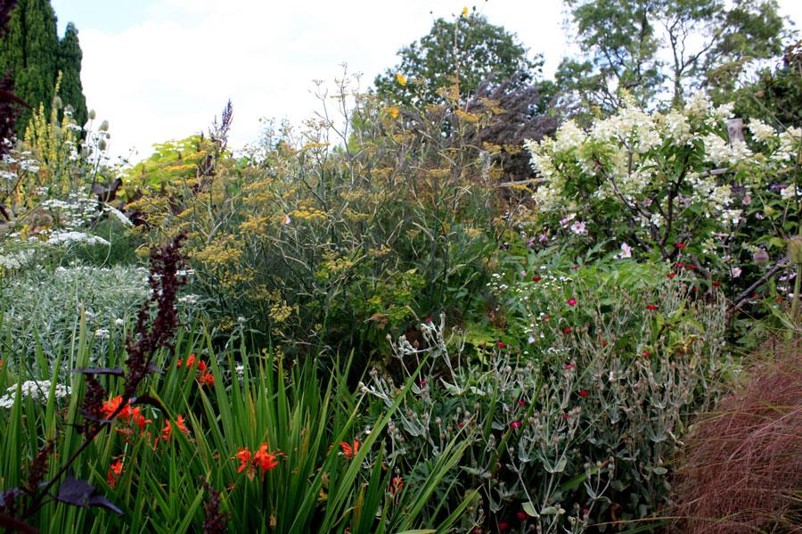 Massif en hauteur pour s isoler place des jardins le blog for Isoler son jardin des regards