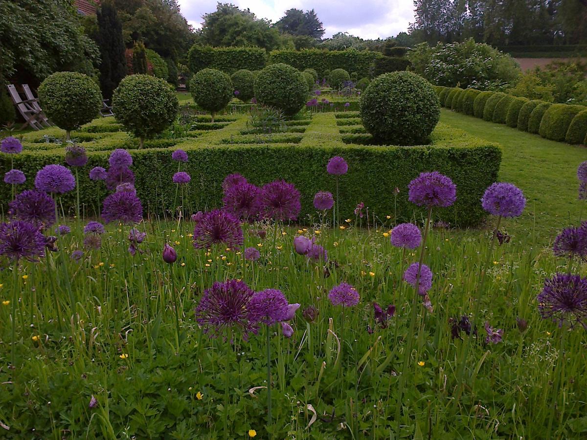 Allium et topiaire 3340 place des jardins le blog - Jardin topiaire ...