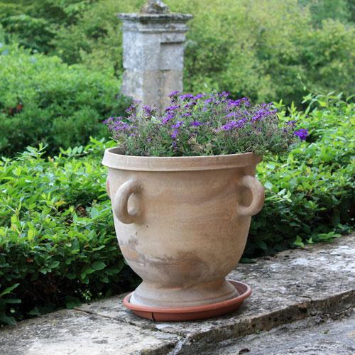 Calendrier du jardinier place des jardins le blog - Quoi planter en septembre ...