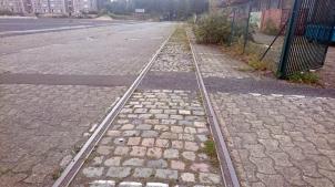 Ferme urbaine Lille DSC_1830