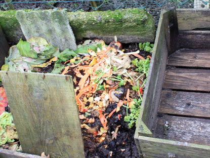 compost051010IMG_0179